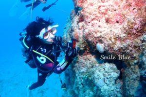 水中生物の写真を撮るゲストの女の子