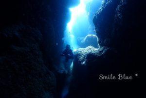 光のトンネルを泳ぐお客様